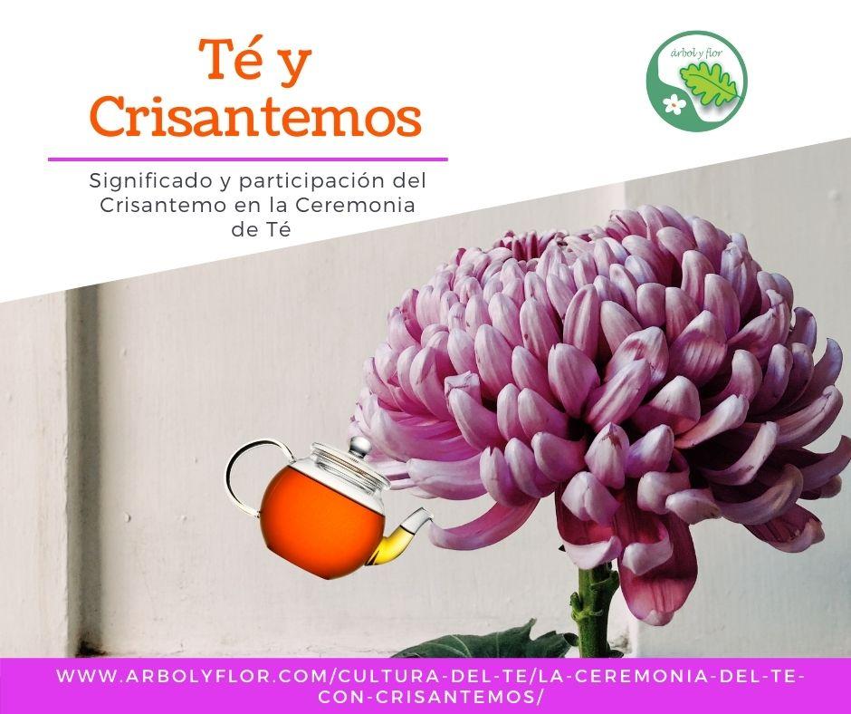 Ceremonia del Té con Crisantemos
